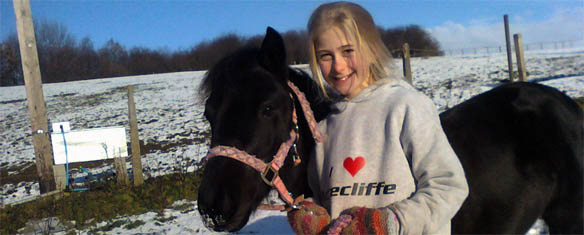 Acrecliffe Equestrian Centre West Yorkshire For